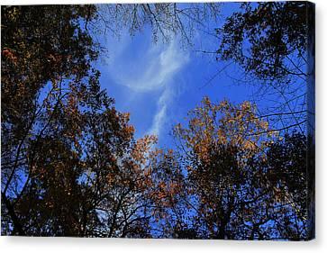 Autumn Clouds Canvas Print