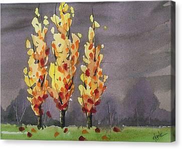 Autumn Cold Rain Canvas Print by Christine Camp