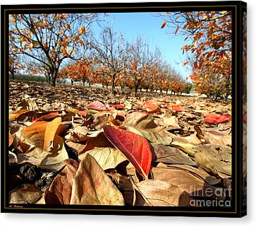 Autumn Colors 04 Canvas Print by Arik Baltinester
