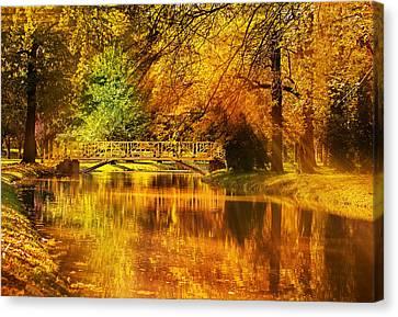 Maple Season Canvas Print - Autumn Colors by Ivan Vukelic