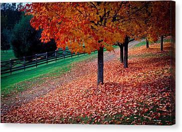 Autumn Colors Canvas Print by John Pagliuca
