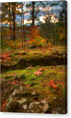 Autumn Colors Canvas Print by Ryan Heffron