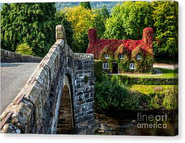 Autumn Colours Canvas Print by Adrian Evans