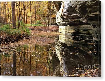 Autumn Comes  To Illinois Canyon  Canvas Print