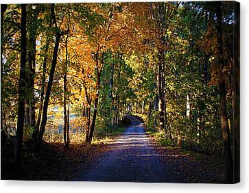 Autumn Country Lane Canvas Print by Cricket Hackmann
