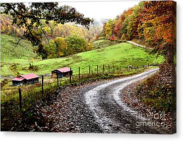 Autumn Country Road Canvas Print by Thomas R Fletcher