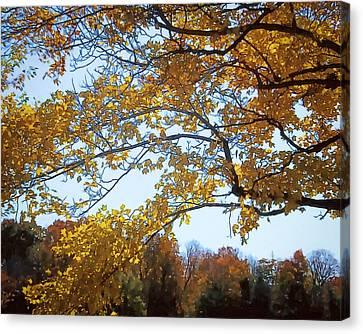 Autumn Cover Canvas Print by Jo-Anne Gazo-McKim