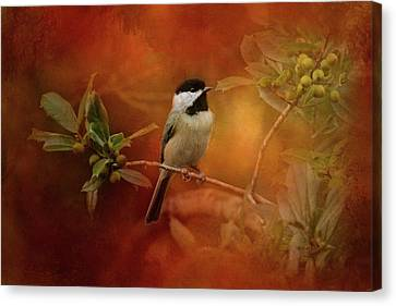Autumn Day Chickadee Bird Art Canvas Print by Jai Johnson