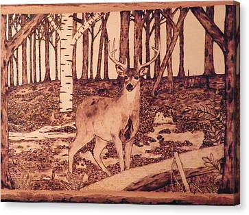 Autumn Deer Canvas Print by Andrew Siecienski