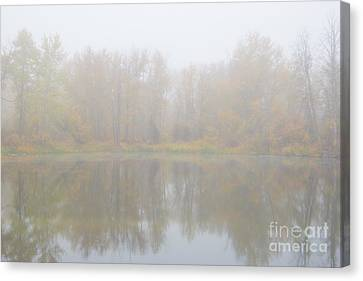 Autumn Dream Canvas Print by Mike Dawson