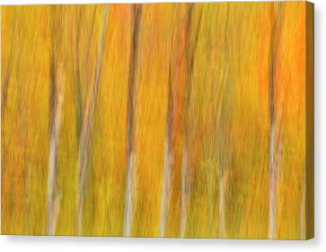 Canvas Print featuring the photograph Autumn Dreams by Mike Lang