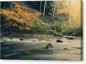 Autumn Dreamscape Canvas Print by Shane Holsclaw