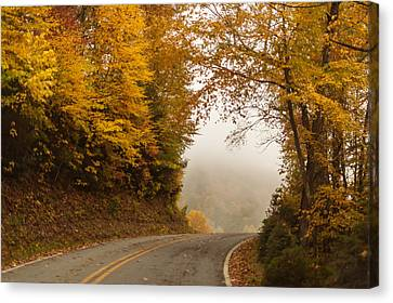 Autumn Drive North Carolina Canvas Print by Terry DeLuco