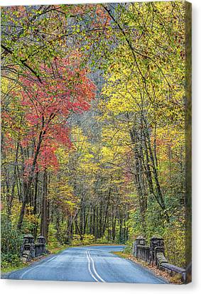 Smokey Mountain Drive Canvas Print - Autumn Drive Through Pisgah National Forest by Donnie Whitaker
