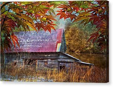 Autumn Embrace Canvas Print by Debra and Dave Vanderlaan