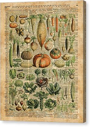 Autumn Fall Vegetables Kiche Harvest Thanksgiving Dictionary Art Vintage Cottage Chic Canvas Print by Jacob Kuch
