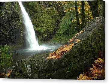 Autumn Falls Canvas Print by Lori Mellen-Pagliaro