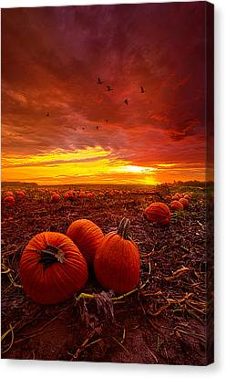 Autumn Falls Canvas Print by Phil Koch