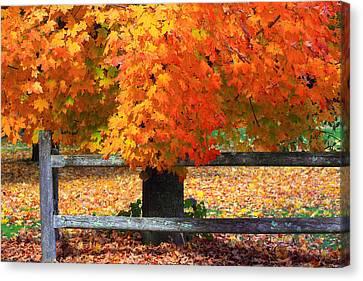 Autumn Fence Canvas Print