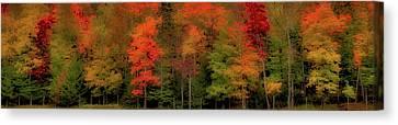 Autumn Fence Line Canvas Print