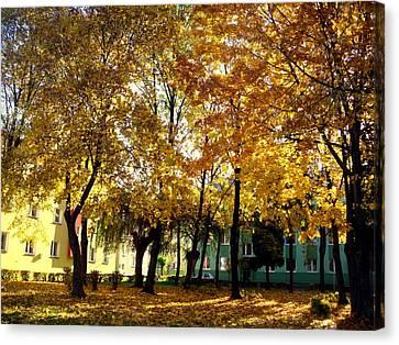 Autumn Festival Of Colors Canvas Print