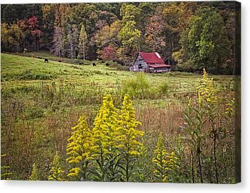 Autumn Fields Canvas Print by Debra and Dave Vanderlaan