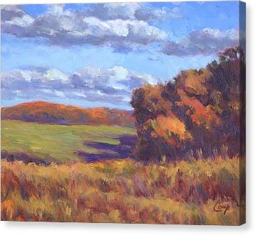 Autumn Fields Canvas Print by Michael Camp