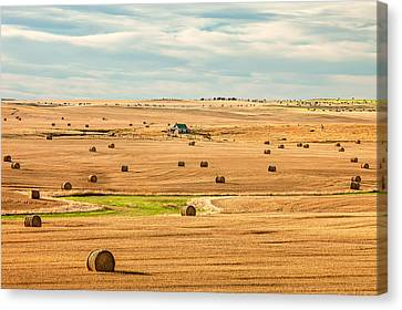 Bales Canvas Print - Autumn Fields by Todd Klassy