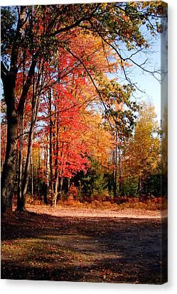 Autumn Flame Canvas Print by Jennifer Englehardt