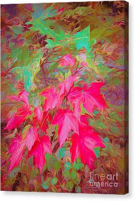 Autumn Flame Canvas Print