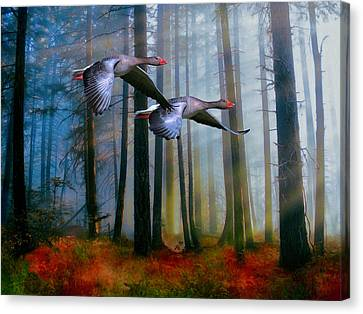 Autumn Flight Canvas Print by Diane Schuster