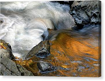 Autumn Flow Canvas Print by Dave Mills