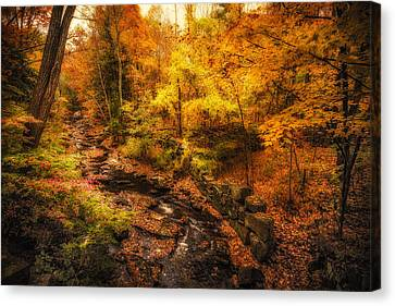 Canvas Print featuring the photograph Autumn Flow by Robert Clifford