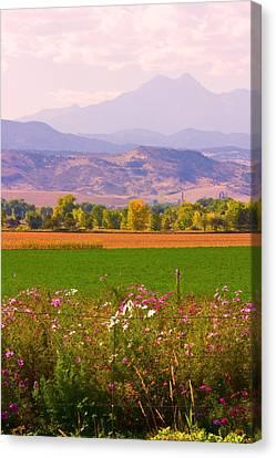 Autumn Flowers At Harvest Time Canvas Print
