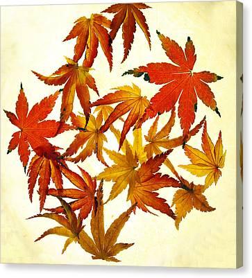 Autumn Leaf Canvas Print - Autumn Flury by Rebecca Cozart