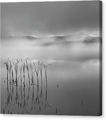 Canvas Print featuring the photograph Autumn Fog Black And White Square by Bill Wakeley