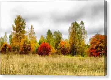 Autumn Forest Canvas Print by Anton Kalinichev