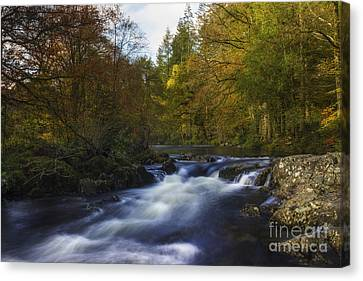 Autumn Forest River Canvas Print by Ian Mitchell