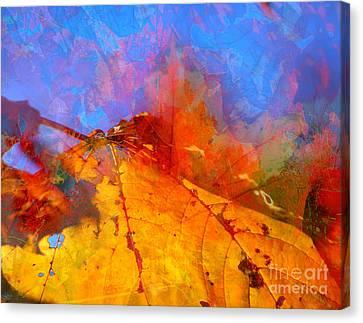 Autumn Fusion 1 Canvas Print by Jeff Breiman