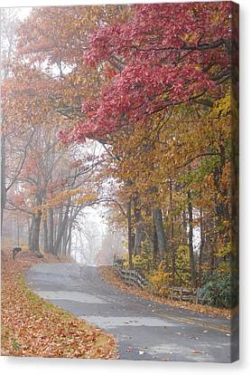 Autumn Glory Canvas Print by Diannah Lynch