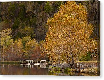 Canvas Print featuring the photograph Autumn Glory In Beaver's Bend by Tamyra Ayles