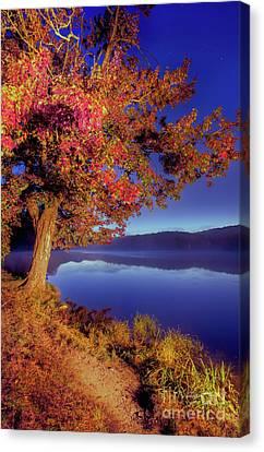 Canvas Print featuring the photograph Autumn Glow Before Sunrise In The Blue Ridge by Dan Carmichael