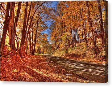 Autumn Glow Canvas Print by Dale R Carlson