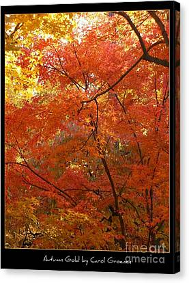 Autumn Gold Poster Canvas Print by Carol Groenen