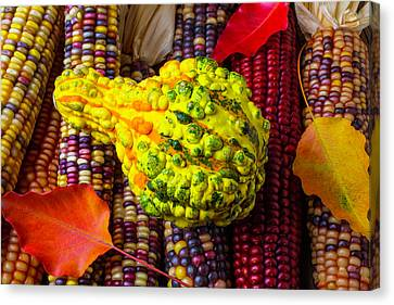 Red Leaf Canvas Print - Autumn Gourd With Corn by Garry Gay