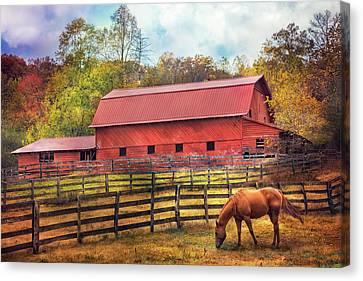Autumn Grazing Canvas Print by Debra and Dave Vanderlaan