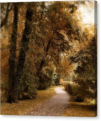 Autumn Grove Canvas Print by Jessica Jenney