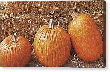Autumn Harvest Canvas Print by Steve Ohlsen