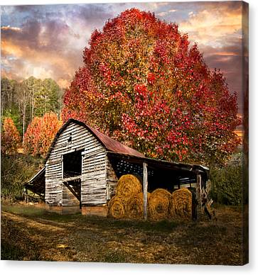 Autumn Hay Barn Canvas Print by Debra and Dave Vanderlaan