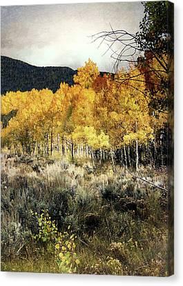 Autumn Hike Canvas Print by Jim Hill